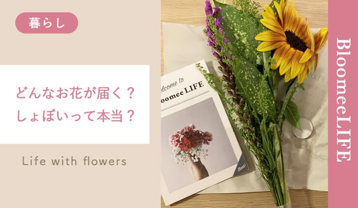 ブルーミーライフのお花
